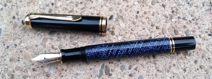 blue-lizard-4